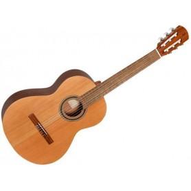 Chitarra classica studente